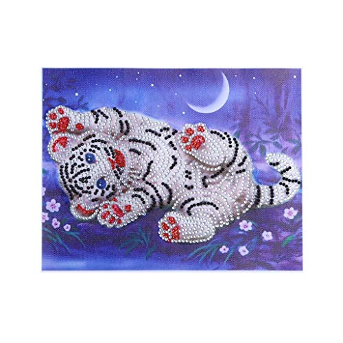 Orcbee  _Special Shaped Diamond Painting DIY 5D Partial Drill Cross Stitch Kits Arts Craft ()