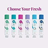 FDS Intimate Deodorant Spray All Day