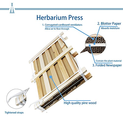Doergear Pine Wood Herbarium Plant Flower Press Set Diy