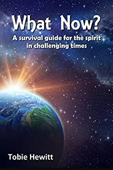 What Now?: A survival guide for the spirit in challenging times by [Hewitt, Tobie]