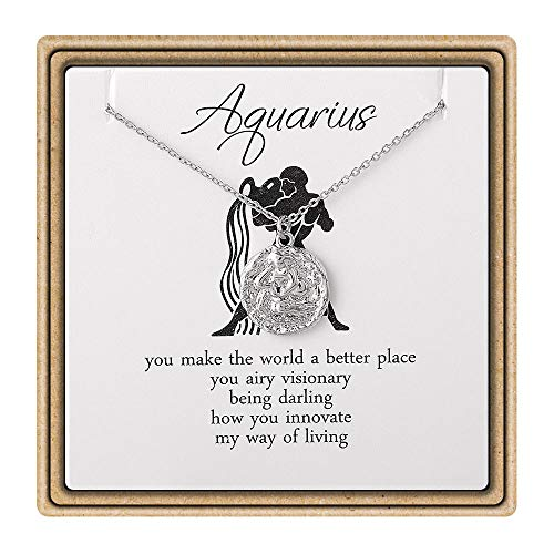 (Turandoss Zodiac Constellation Necklace - 12 Constellation Aquarius Sign Disc Pendant Necklace Astrology Horoscope Sign Zodiac Star Necklace for Girls Women Birthday Gift for)