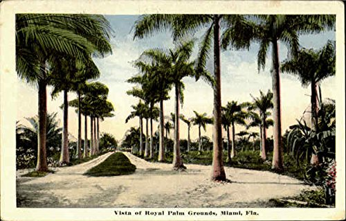 Vista Of Royal Palm Grounds Miami, Florida Original Vintage Postcard