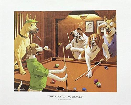 Unframed Print Ther Scratching Beagle, (Dog/Animal / 40-8X10-S) 8x10 inch Arthur SARNOFF, Art Print & Poster