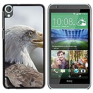 Hot Style Cell Phone PC Hard Case Cover // M00130880 Eagle Bird Of Prey Bird // HTC Desire 820