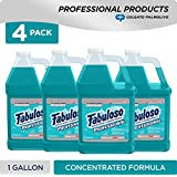 FABULOSO Professional All Purpose Cleaner & Degreaser, Ocean Cool, Concentrated Formula, Bathroom Cleaner, Toilet Cleaner, Floor Cleaner, Glass Cleaner, Washing Machine and Dishwasher Surface Cleaner, Mop Cleanser, Kitchen Pots and Pans Degreaser, 1 Gallon (Pack of 4) (US05252A)