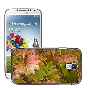 Print Motif Coque de protection Case Cover // M00154061 Hoja Hojas de otoño Rojo // Samsung Galaxy S4 S IV SIV i9500