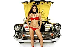 Danica Patrick 11x17 HD Photo Poster Hot NASCAR #04