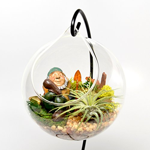 Pixie Glare Hanging Glass Terrariums Gnome Garden Kit. Includes All Accessories and Miniatures - With Live Air Plant by Pixie Glare