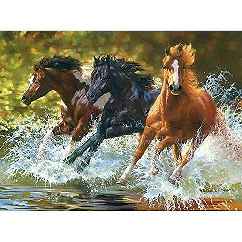 Paint by Numbers for Kids Adults DIY Oil Painting Kit Beginner [Wooden Frame] - Three galloping horses 16