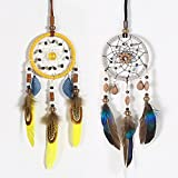 Ricdecor Dream catcher handmade traditional white feather dream catcher wall hanging car hanging decoration ornament (1 pc Yellow&1 pc Gray Set)
