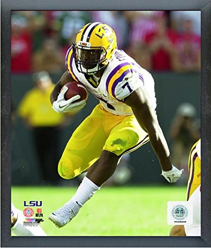 (Leonard Fournette LSU Tigers 2016 Action Photo (Size: 17