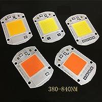 BEESCLOVER AC 110V 220V LED Floodlight COB Chip Smart IC Driver Bulb Lamp 20W 30W 50W