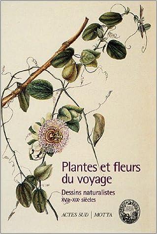 Amazon Fr Plantes Et Fleurs Du Voyage Dessins