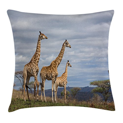 Ambesonne Africa Throw Pillow Cushion Cover, African Giraffe Family Looking at the Skyline in Savannah Grassland with Shrubs Print, Decorative Square Accent Pillow Case, 26 X 26 Inches, Tan Blue
