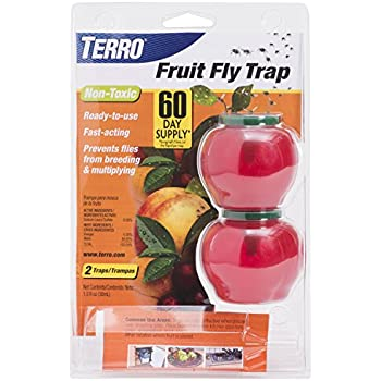 terro fruit fly trap t2500 home pest