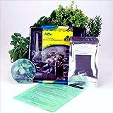 Medicinal Herb Garden Starter Kit- Start Growing Fresh Medicine Herbs