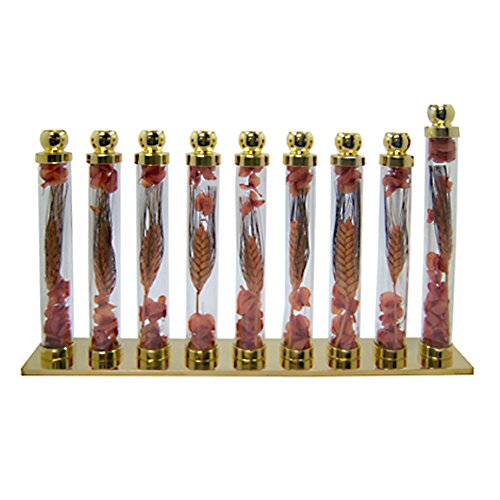 Glass & Brass Menorah, Real Wheat in Glass Tubes, Brown/Peach Colors 12'' Wide x 7.75'' Tall