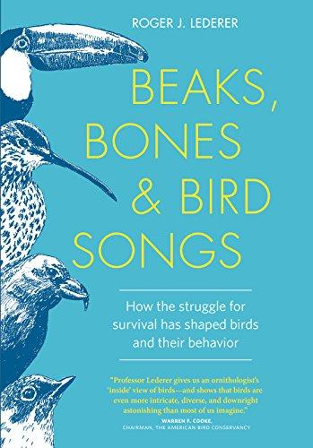 BIRDS OF PREY - BOOKS 51TJXkVWBjL