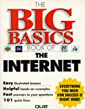 Big Basics Book of the Internet, Joe Kraynak, 0789707535