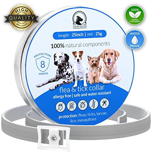 LuckyPluto Non Toxic Adjustable pet flea collar