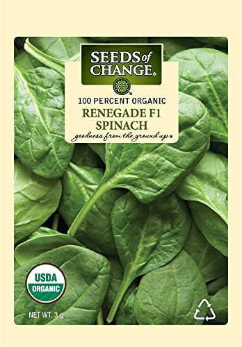 Seeds of Change S21660 Certified Organic Renegade F-1 Spinach
