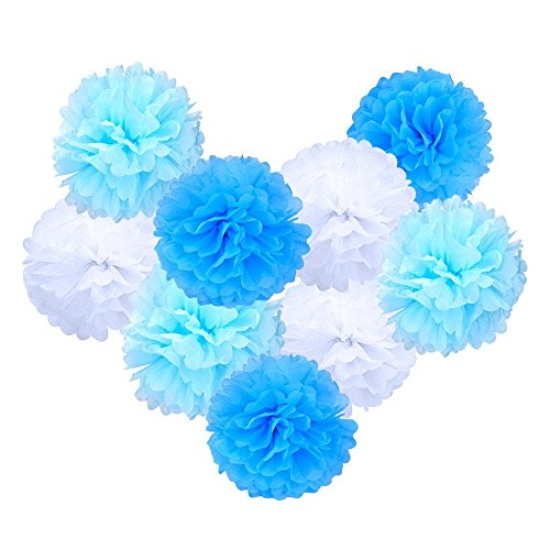 Yingli Diy Decorative Tissue Paper Pom Poms Flowers Ball Perfect For Party Wedding Home Outdoor Decoration 9Pcs  Blue White