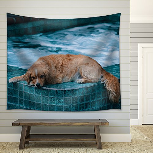 Dog Lying on The Edge of a Bath Pool Fabric Wall