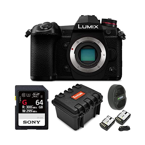 51TJszjGo1L. SS600  - Panasonic Lumix Mirrorless Micro 4/3 Digital Camera (Body) & Accessory Kit