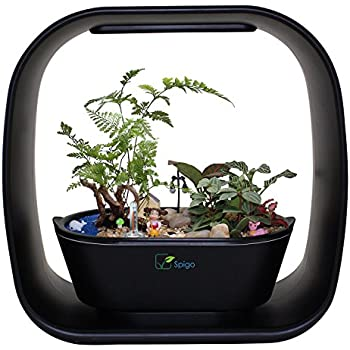 Amazon plant grow led light kit indoor herb garden with timer intelligent indoor led light garden by spigo with self timing and self watering technology great for growing fresh herbs small plants and also makes a workwithnaturefo