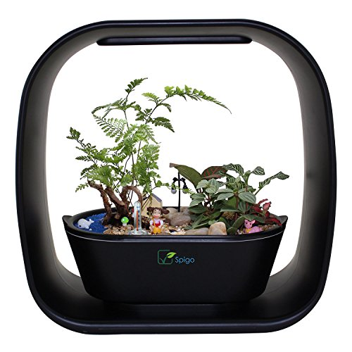 INTELLIGENT INDOOR LED LIGHT GARDEN By Spigo, With Self-Timing and Self Watering Technology, Great for Growing Fresh Herbs, Small Plants, and Also Makes A Great Gift, Sleek Matte Black Finish by Spigo