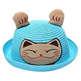 Wesracia Baby Girls Cute Hat Sun Protection,Breathable Soft Straw Hats Cartoon Kitty Hat with Ears 6~24 Months Old (Blue)