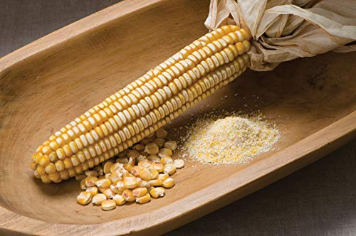 - David's Garden Seeds Corn Dent Nothstine SL9335 (Yellow) 100 Non-GMO, Organic, Heirloom Seeds