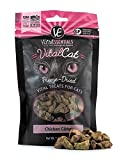 Vital Essentials Freeze-Dried Raw Vital Cat Treats Chicken Giblets 1oz, Pack of 2