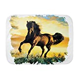 Royal Lion Baby Blanket White Horse at Sunset