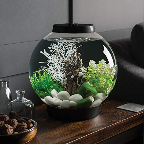 Amazon.com : biOrb CLASSIC 15 Aquarium with LED Light - 4 Gallon, Black : Aquarium Starter Kits : Pet Supplies