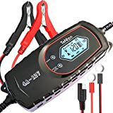 TeNizo Car Battery Charger, 4 Amp 6/12V Fully Smart Automatic Battery Maintainer, 8-Stage