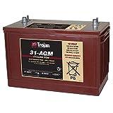Trojan T31-AGM 12V 100Ah Group 31 Deep Cycle AGM Battery FAST USA SHIP