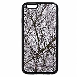 iPhone 6S / iPhone 6 Case (Black) White Branches