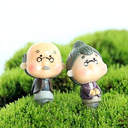 Amoy.B Male and female mother-in-law couple microscopic bonsai fleshy ornaments garden micro-view purple clothes *1