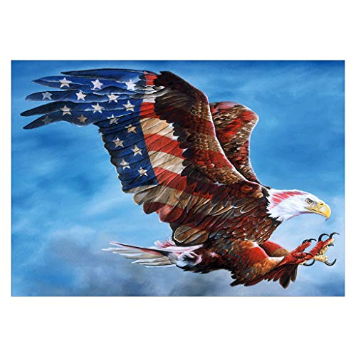 5D Diamond Painting Set by Number Kits, Full Drill Needlework Embroidery Cross Stitch Kit Rhinestone Pictures Arts Craft for Home Wall Decor American Flags Eagle (Flag Eagle Embroidery)