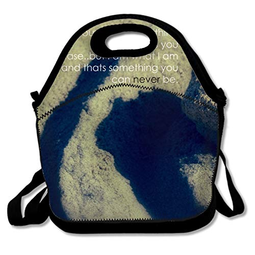 Insulated Lunch Bag Tote Dark Emo Handbag Lunchbox Food Container Tote Cooler Warm Pouch for School Work Office