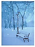 DP Christmas Canvas Led Large Print With Lights Festive Wall Art 40Cm X 30Cm Decorations (Winter Scene Snowy Bench)