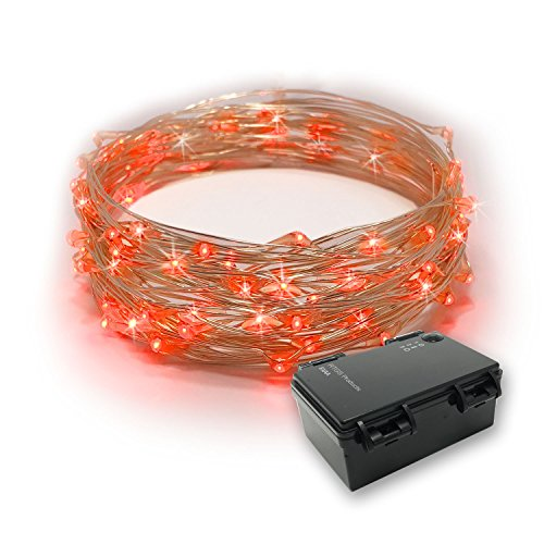 RTGS 60 LEDs String Lights Battery Operated on 20 Feet Long Silver Color Wire, Indoor and Outdoor with Waterproof Battery Box and Timer (RED)