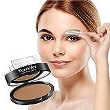 Turelifes Waterproof Eye Brow Stamp Powder Perfect Eyebrow Power Seal Nature Eye Brow Powder Delicate Shape (Light brown)