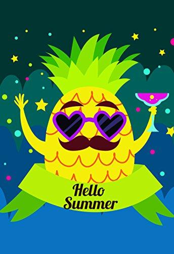 VALDERLAND Summer Garden Flag Pineapple American Hummingbird
