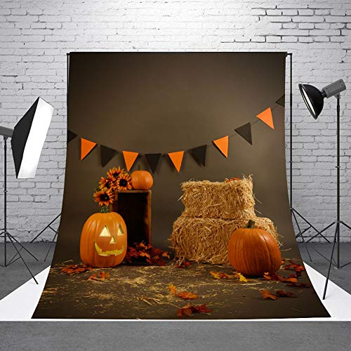 Halloween Theme Backdrop Pumpkins Photo Background Photography Studio Photoshoot Photographer Props]()