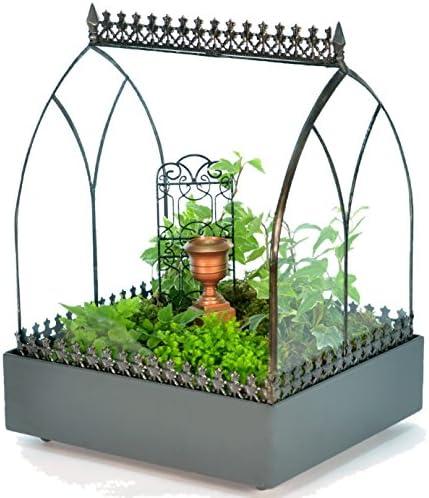 H Potter Glass Terrarium Wardian Case Succulent Planter Container for Plants WAR142