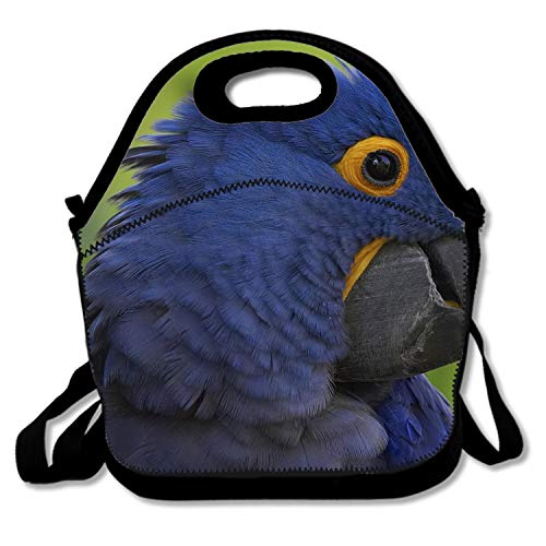 Insulated Polyester Fiber Lunch Bag for Women and Kids Animal Hyacinth Macaw Birds Beak -