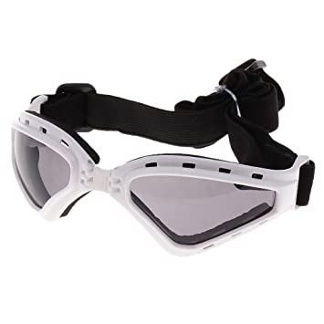 cd113a8cfe NON Sharplace Gafas de Sol para Perros Complimentos Lentes Protectores  contra Rayos UV - Blanco: Amazon.es: Deportes y aire libre