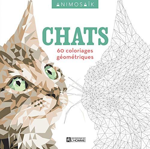 Coloriage Chat Maine Coon.Animosaik Chats 60 Coloriages Geometriques Amazon Ca